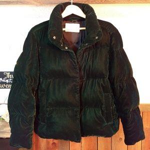 Zara Women Velour Puffer Coat